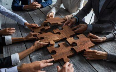 IRVE, un réseau d'acteurs complexe